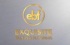 Logo mockup-ebf