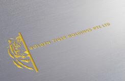 Logo mockup-tige